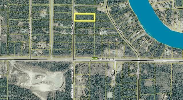 L12 Aero Plane Street, Soldotna, AK 99669 (MLS #20-14292) :: RMG Real Estate Network | Keller Williams Realty Alaska Group