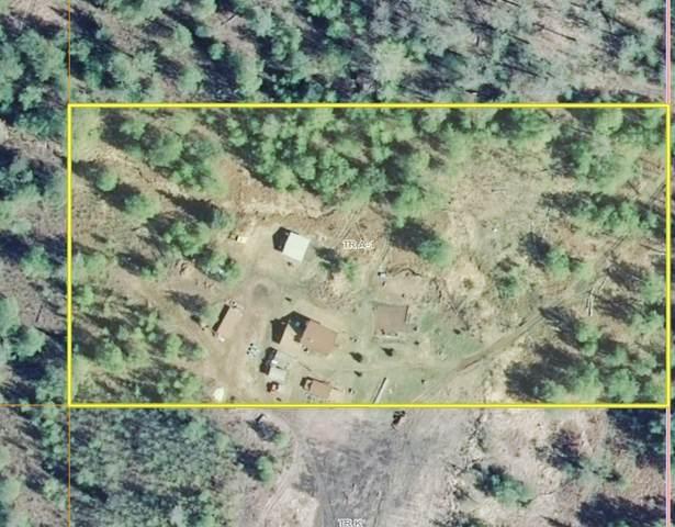 Tr A1 No Road, Remote, AK 99000 (MLS #20-14352) :: Wolf Real Estate Professionals