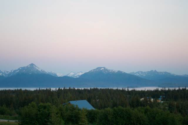 64232 Mineral Drive, Homer, AK 99603 (MLS #20-1436) :: Synergy Home Team