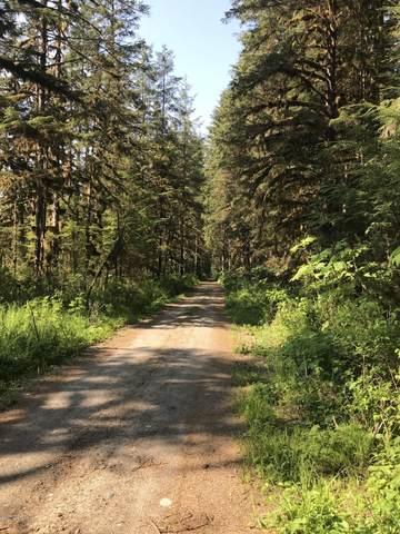 L13 Point Agassiz Highway, Petersburg, AK 99833 (MLS #20-14368) :: Wolf Real Estate Professionals