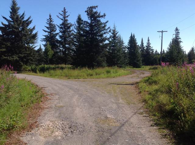 71938 Long Gone Avenue, Anchor Point, AK 99556 (MLS #20-1449) :: Roy Briley Real Estate Group