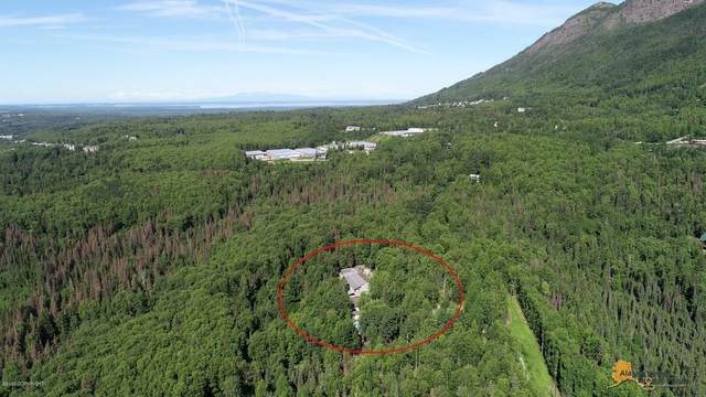 9416 Spring Street, Eagle River, AK 99577 (MLS #20-14500) :: Wolf Real Estate Professionals