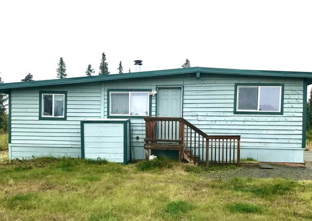 27130 Cloyds Road, Anchor Point, AK 99556 (MLS #20-14510) :: Synergy Home Team