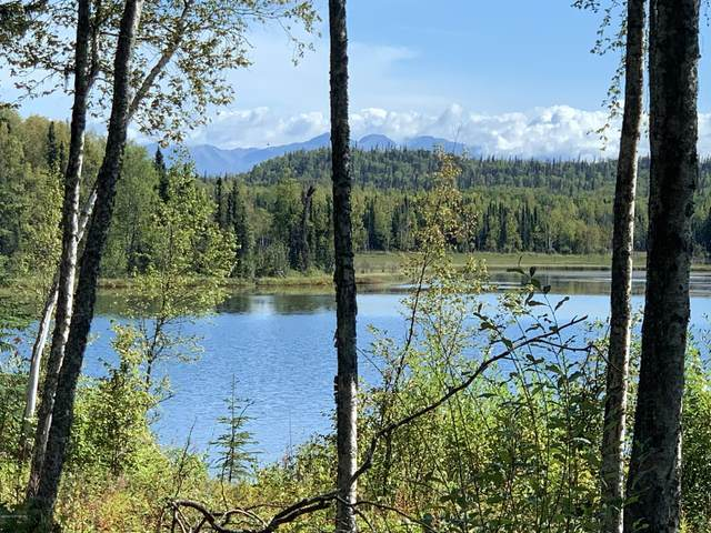 22590 W Klebs Road, Wasilla, AK 99654 (MLS #20-14544) :: RMG Real Estate Network | Keller Williams Realty Alaska Group