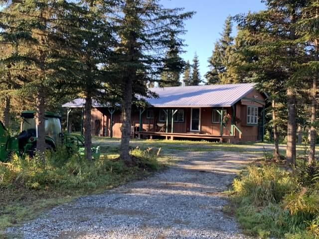 13650 Wildrose Lane, Clam Gulch, AK 99568 (MLS #20-14575) :: Wolf Real Estate Professionals