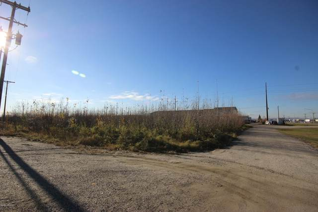 L3 Van Horn Road, Fairbanks, AK 99701 (MLS #20-14628) :: Team Dimmick