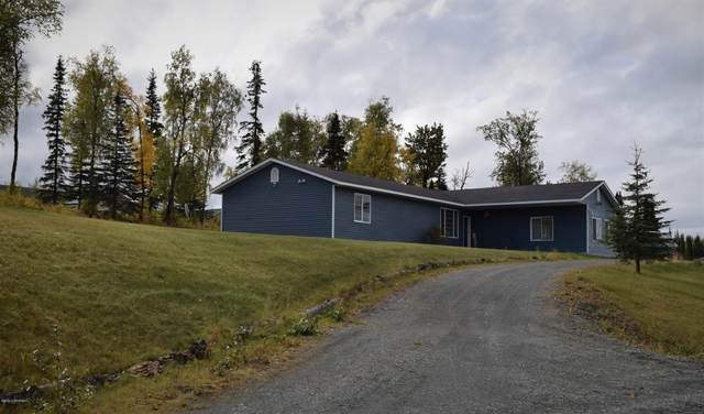 46463 Shawna Lane, Kenai, AK 99611 (MLS #20-14716) :: Wolf Real Estate Professionals