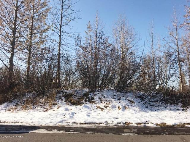 B8 L10 Trails End Subdivision, Anchorage, AK 99516 (MLS #20-14771) :: Team Dimmick