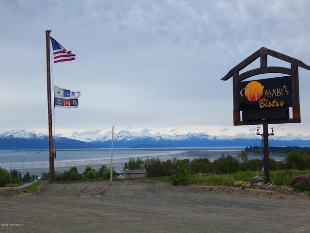 59217 E End Road, Homer, AK 99603 (MLS #20-14868) :: Wolf Real Estate Professionals