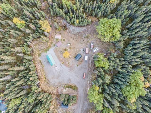 53882 Blithe Court, Kasilof, AK 99610 (MLS #20-14902) :: Alaska Realty Experts