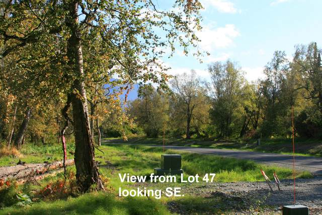 15135 E Rocky Point Drive, Palmer, AK 99645 (MLS #20-14955) :: Wolf Real Estate Professionals