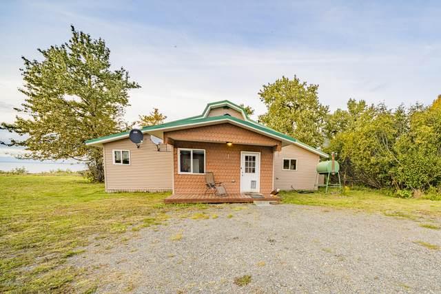 66340 Alder Street, Ninilchik, AK 99639 (MLS #20-14974) :: Wolf Real Estate Professionals