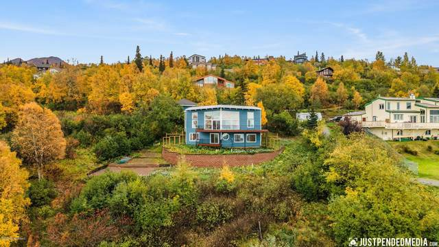 10200 Kasilof Boulevard, Anchorage, AK 99507 (MLS #20-15018) :: Wolf Real Estate Professionals