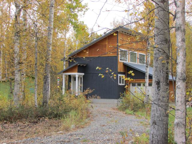 19938 E Caswell Lakes Road, Willow, AK 99688 (MLS #20-15053) :: Team Dimmick
