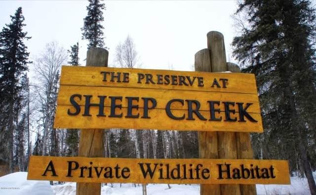 49431 S Muir Road, Willow, AK 99688 (MLS #20-1510) :: RMG Real Estate Network | Keller Williams Realty Alaska Group