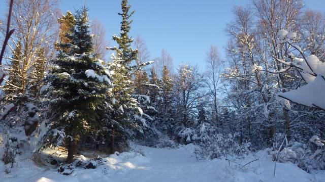 L1B Hill Drive, Anchorage, AK 99507 (MLS #20-15106) :: Team Dimmick