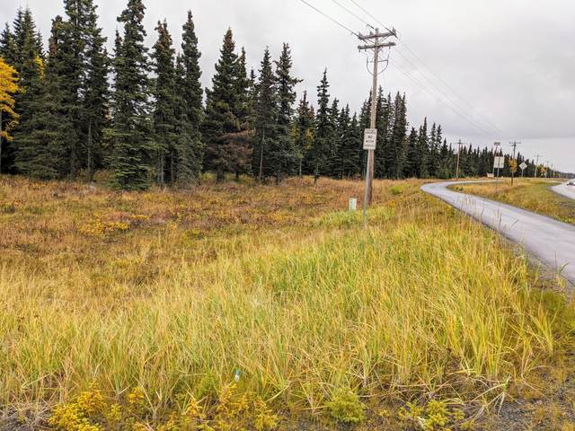 000 Kalifornsky Beach Road, Kenai, AK 99611 (MLS #20-15259) :: Wolf Real Estate Professionals