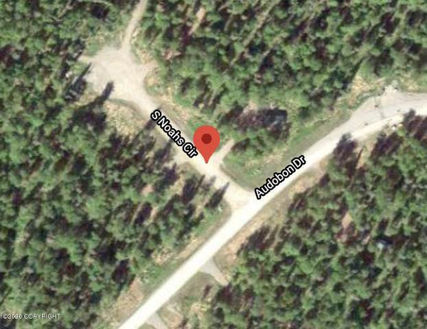 49390 S Noahs Circle, Willow, AK 99694 (MLS #20-15355) :: Alaska Realty Experts
