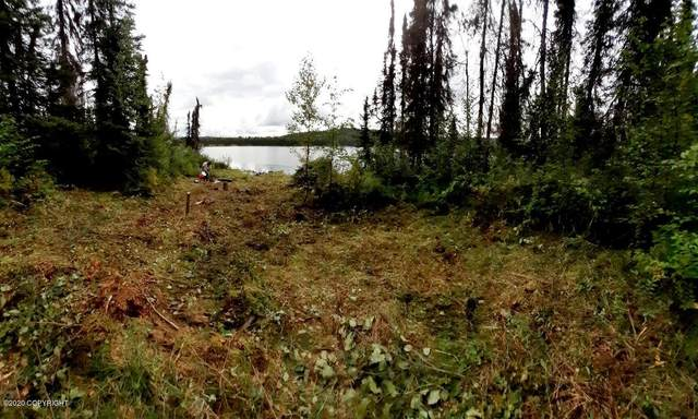 ASLS 90-2 Heart Lake, Talkeetna, AK 99676 (MLS #20-15382) :: RMG Real Estate Network | Keller Williams Realty Alaska Group