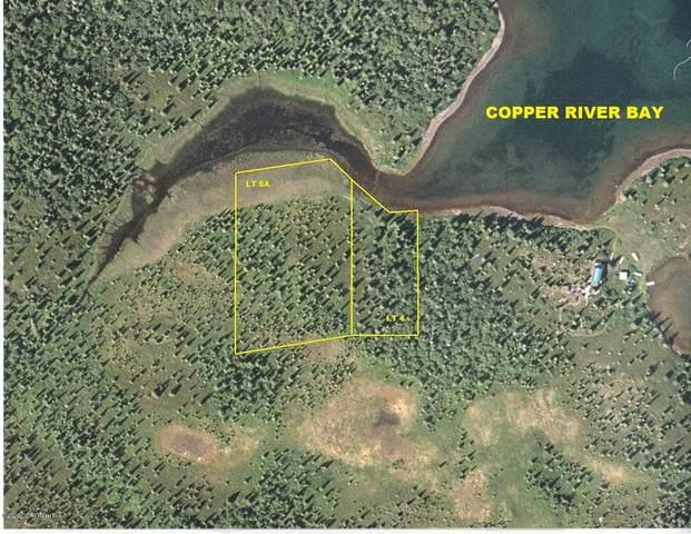 Lt 4 Copper River Bay (No Road), Remote, AK 99000 (MLS #20-15428) :: Daves Alaska Homes