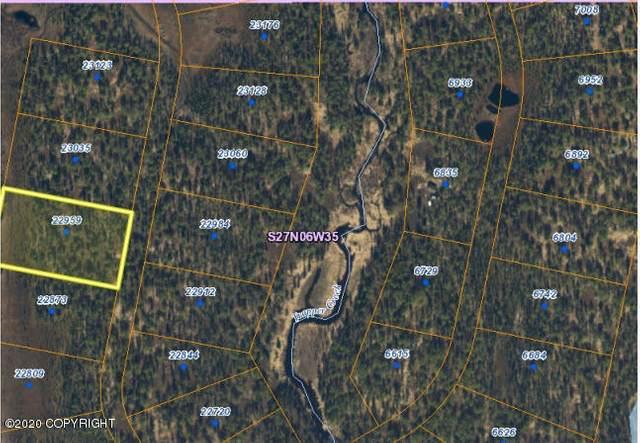 22959 S Hugo Loop, Trapper Creek, AK 99683 (MLS #20-15446) :: Wolf Real Estate Professionals