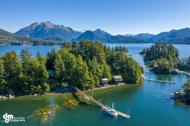 Tr A Morne Island, Sitka, AK 99835 (MLS #20-15480) :: Synergy Home Team