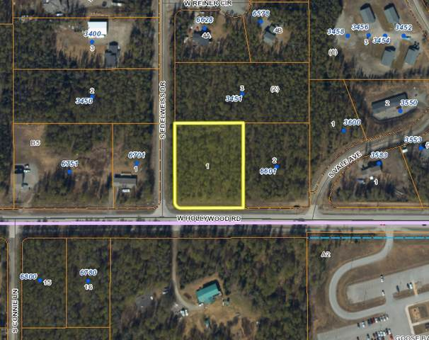 6601 W Hollywood Road, Wasilla, AK 99654 (MLS #20-15528) :: Wolf Real Estate Professionals