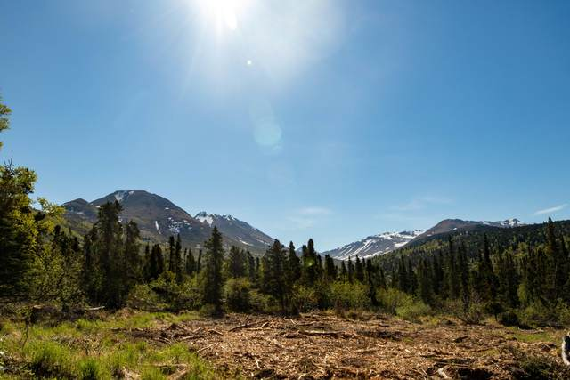 Lot 3 Pathfinder Circle, Anchorage, AK 99516 (MLS #20-15699) :: Wolf Real Estate Professionals
