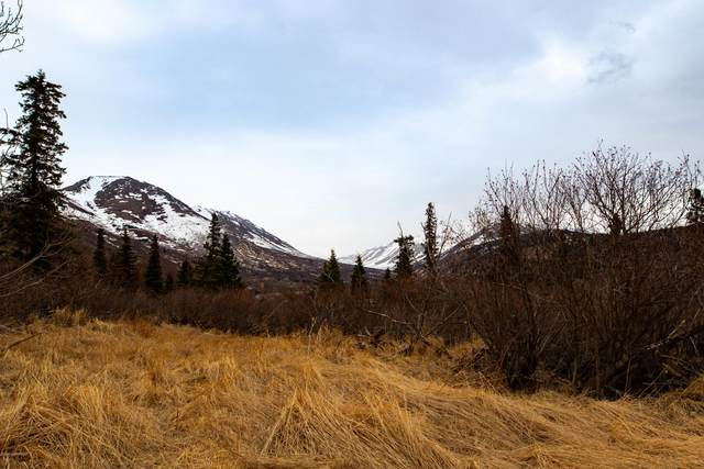 Lot 4 Pathfinder Circle, Anchorage, AK 99516 (MLS #20-15702) :: Synergy Home Team