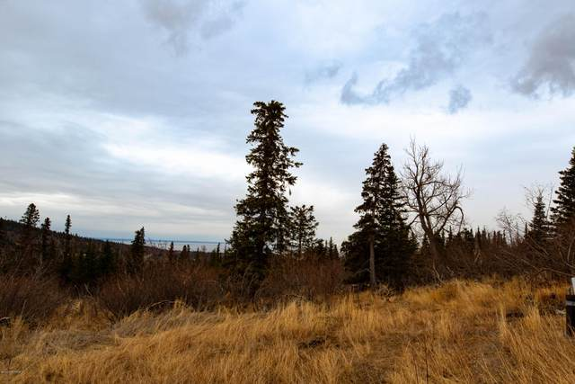 LOT 5 Pathfinder Circle, Anchorage, AK 99516 (MLS #20-15707) :: Wolf Real Estate Professionals