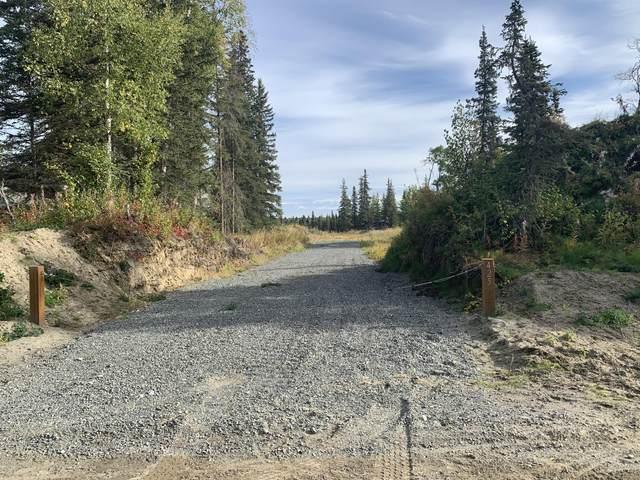 425 Phillips Drive, Kenai, AK 99611 (MLS #20-15710) :: Alaska Realty Experts