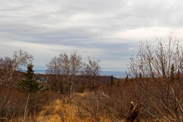 LOT 13 Trailblaze Circle, Anchorage, AK 99516 (MLS #20-15711) :: Synergy Home Team