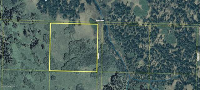 TR 4 Irma Lane, Homer, AK 99603 (MLS #20-15768) :: Wolf Real Estate Professionals