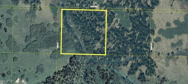 Tr 5 Irma Lane, Homer, AK 99603 (MLS #20-15769) :: Wolf Real Estate Professionals