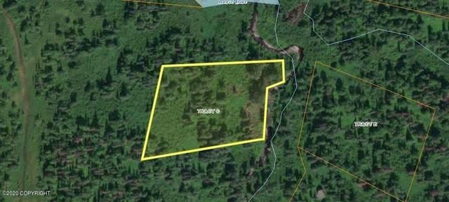 Tr C Bunco Lake Area, Trapper Creek, AK 99683 (MLS #20-15838) :: Wolf Real Estate Professionals