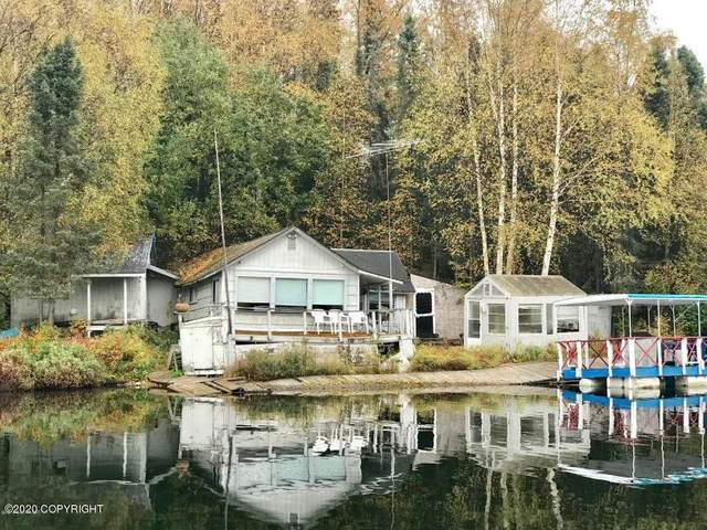 L1 No Road Stephan Lake, Big Lake, AK 99652 (MLS #20-15968) :: Wolf Real Estate Professionals