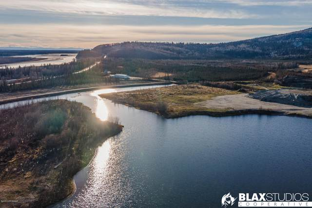 L01B Chena Point Lake, Fairbanks, AK 99709 (MLS #20-15969) :: Powered By Lymburner Realty