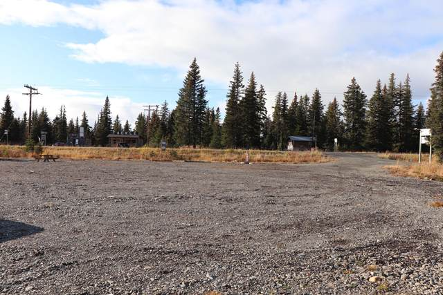 33200 Sterling Highway, Anchor Point, AK 99556 (MLS #20-15992) :: Alaska Realty Experts