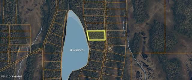 L7 B4 No Road, Trapper Creek, AK 99683 (MLS #20-16071) :: Wolf Real Estate Professionals