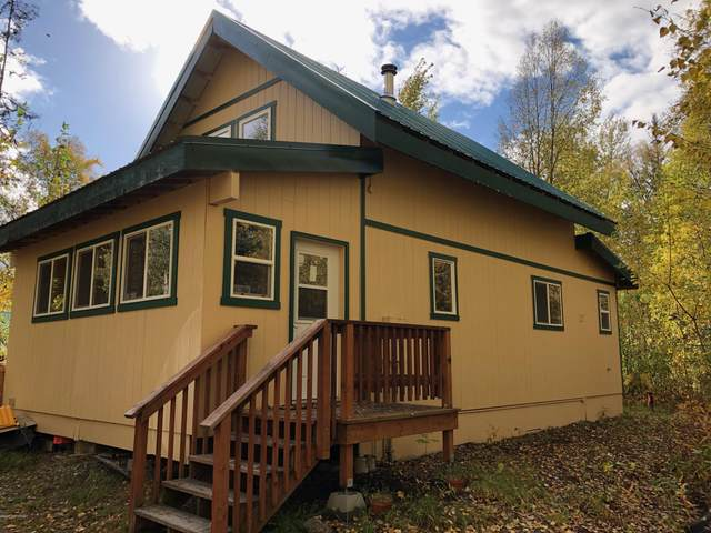 14278 E Front Street, Talkeetna, AK 99676 (MLS #20-16115) :: Wolf Real Estate Professionals