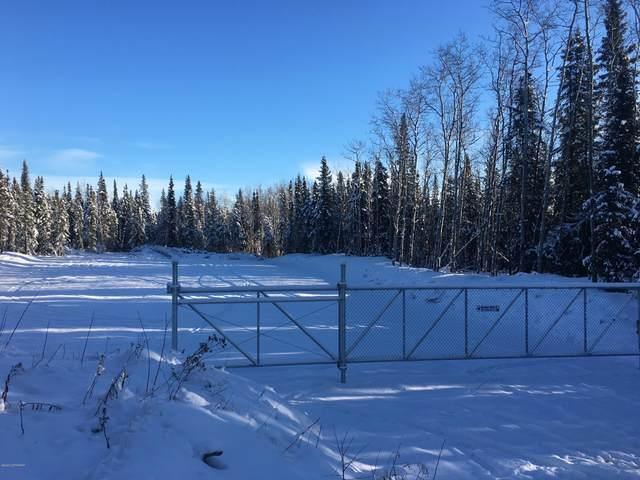 30160 Sterling Highway, Sterling, AK 99672 (MLS #20-1613) :: RMG Real Estate Network | Keller Williams Realty Alaska Group