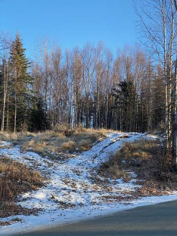 2685 Megans Circle, Wasilla, AK 99623 (MLS #20-16377) :: The Adrian Jaime Group | Keller Williams Realty Alaska