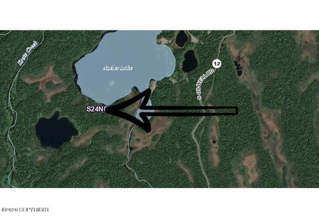 000 No Road, Trapper Creek, AK 99683 (MLS #20-16402) :: Wolf Real Estate Professionals