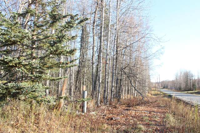 L1 B1 Lake Village Sub, Nikiski/North Kenai, AK 99635 (MLS #20-16426) :: Wolf Real Estate Professionals