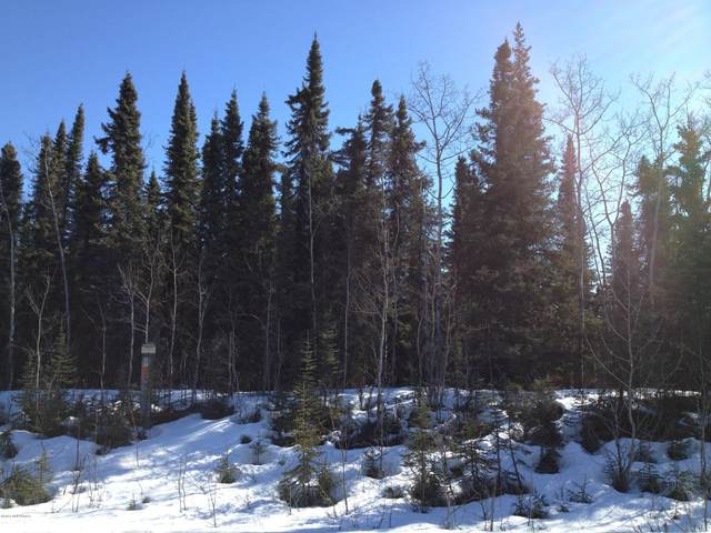 L1-18 B2-3 State Park Road, Soldotna, AK 99669 (MLS #20-16440) :: Wolf Real Estate Professionals