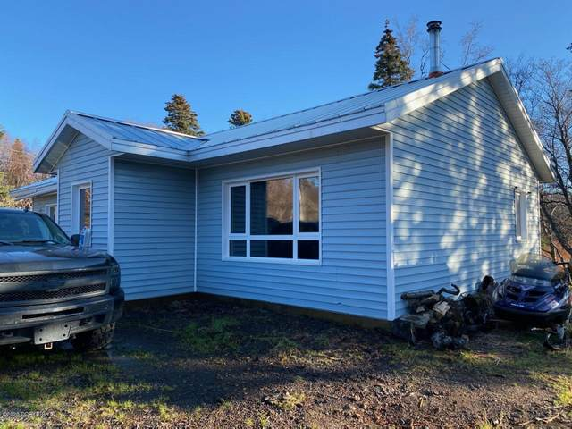 1729 Cedar Circle, Dillingham, AK 99576 (MLS #20-16531) :: RMG Real Estate Network | Keller Williams Realty Alaska Group