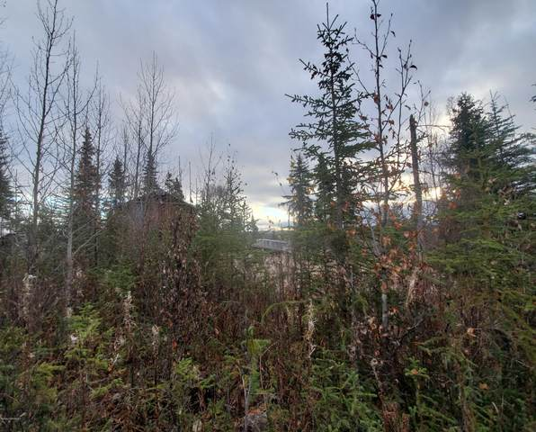 31900 Birch Haven Road, Anchor Point, AK 99556 (MLS #20-16643) :: Wolf Real Estate Professionals