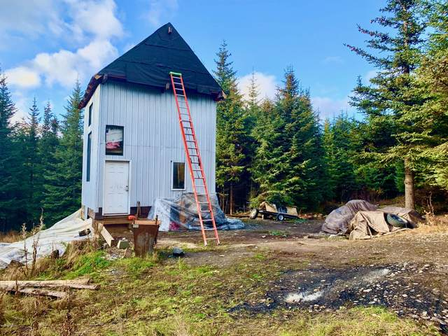 57833 Blueberry Glenn Court, Homer, AK 99603 (MLS #20-16712) :: Alaska Realty Experts