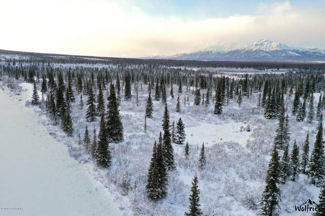 L4 B1 Denali Jack River Canyon, Cantwell, AK 99729 (MLS #20-16953) :: Wolf Real Estate Professionals