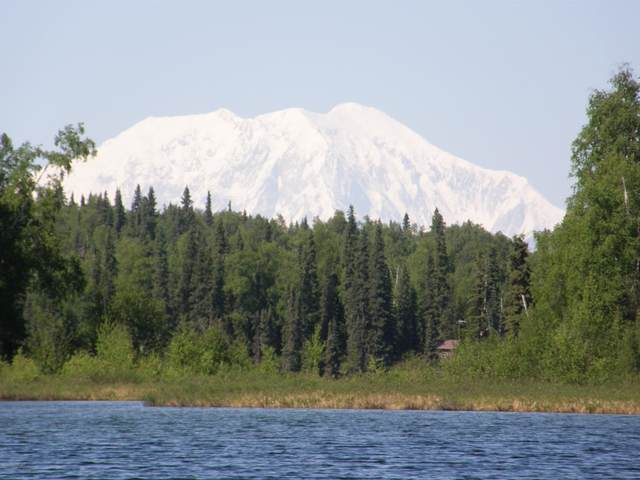 Tr G No Road, Remote, AK 99000 (MLS #20-17168) :: Wolf Real Estate Professionals